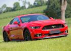 Photographie Caterina Mehner - Business-Fotografie - Mustang Konny Roscher